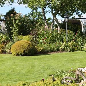 Вот бы мне такой газон, когда травиночка к травинке, и бархатистый перелив, и мягкий будто бы перинка!