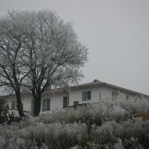 Мечта о белом доме