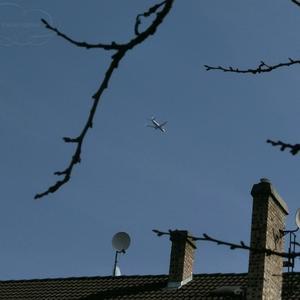 Пролетая над моим гнездом