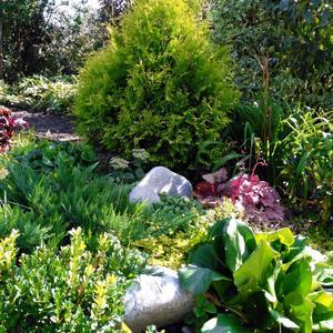 Уютный уголок сада