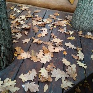 Осенние узоры
