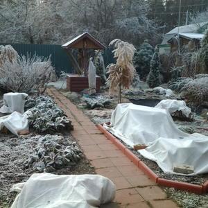 Нам зима не страшна!
