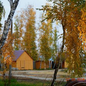 Совсем недавно была золотая осень...