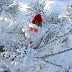 Зима - время чудес!