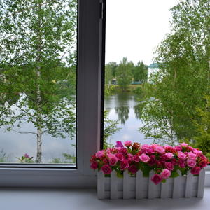 А из нашего окна....