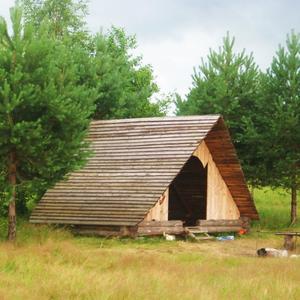 Для беседы в лесу)