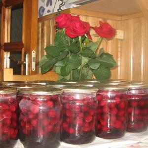 Вишня, вишня - спелая вишня, вишневых ягод аромат!!