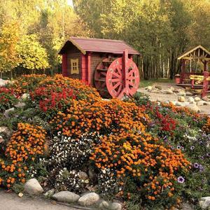 Альпийская горка и детская площадка