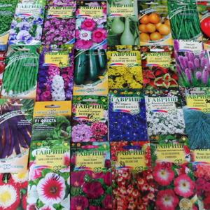 Семена от Гавриш сею каждый год!