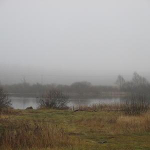 Пруд поздней осенью. Туман