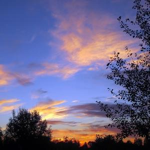 Осенним вечером