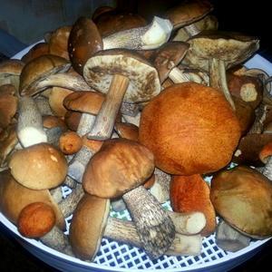 Поздно вечерком сушим грибочки на зиму...