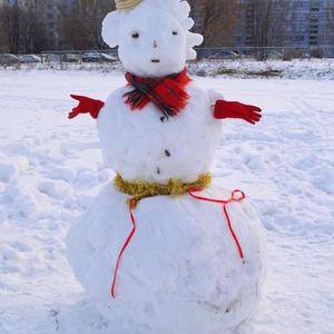 Вот такая снеговичка на школьном дворе...
