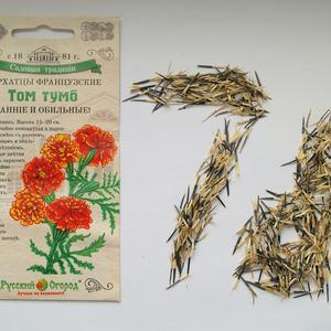 Любимый сорт бархатцев от Русского огорода