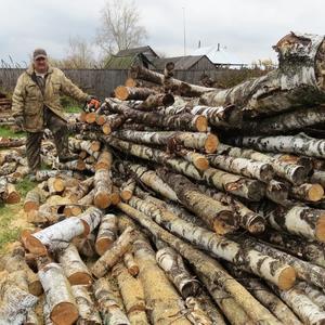 Зима в Сибири долгая, и дров надо много