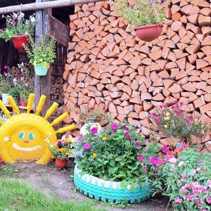 Три источника тепла: улыбка, солнце и дрова