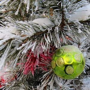 Снег на сосне - тоже новогоднее украшение