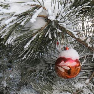 Красный шар на ёлке снежной
