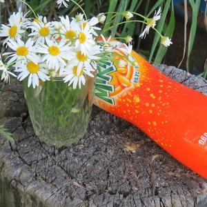 Прохладный апельсиновый напиток