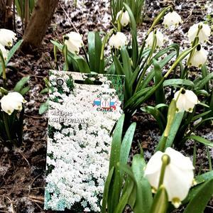 Белый цвет всегда хорош - что весной, что летом!!!!