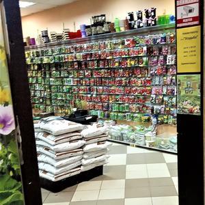Очередной магазин семян... Заходить или просто сфотографировать?))))