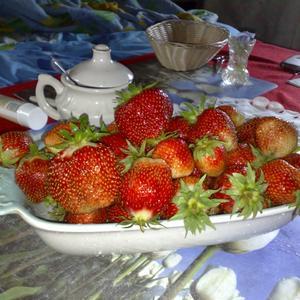 Первые ягоды на завтрак