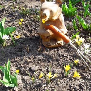 """""""На Благовещение весна зиму поборола"""", а Мишка крокусы разбудил!"""