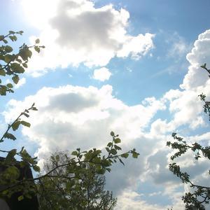 Какое счастье - мирное небо над дачей!