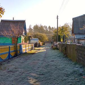 Первые заморозки, и наша дачная улица опустела...