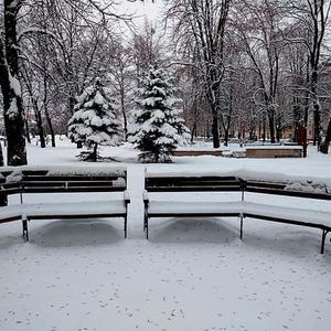 Тихое утро в зимнем сквере