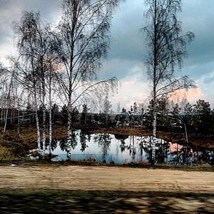 Мимо озера лесного, в царство семидачницы