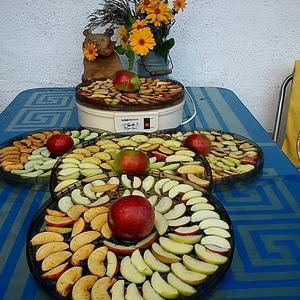 Первые упавшие яблочки - будущие яблочные чипсы