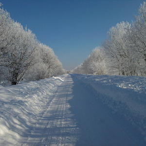 Зимняя дорога на дачу