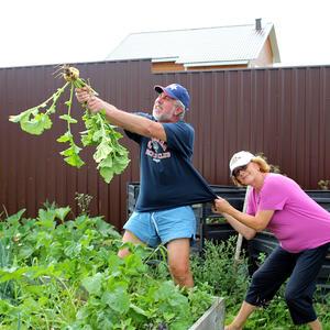 Посадила мама репку!