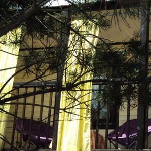 В тени сосен, на балконе так приятно мечтать:)