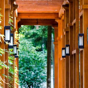 Деревянная галерея в лесу
