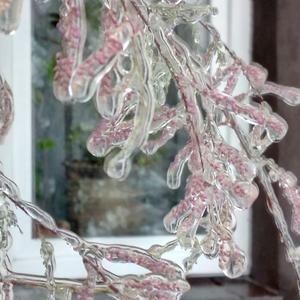 Новый способ сохранить цветы на зиму