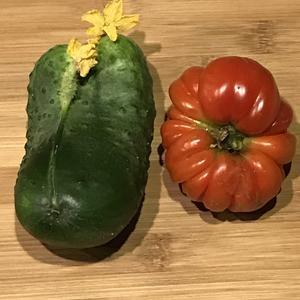 Огурцовая семья и Синьор помидор