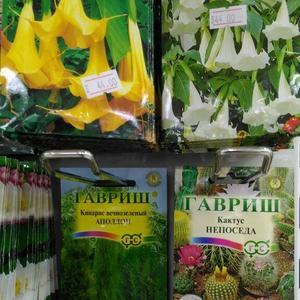 Многообразие семян от Гавриш