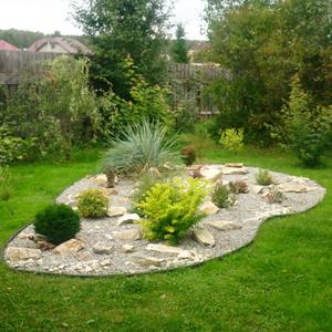 Гравийный садик и пейзажные заросли