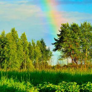 Как непрочны, как летучи  эти радуги и тучи,  эти летние дожди
