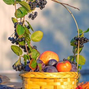 Корзина с фруктами — для вас! Чтобы порадовала глаз