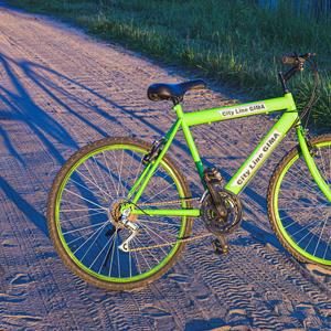 """""""Как хорош велосипед! Проще – механизма нет:  рама, руль, два колеса, вот и все вам чудеса"""""""