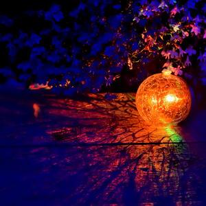 Давайте все вместе нашу планету расцветим ярким и радостным светом!
