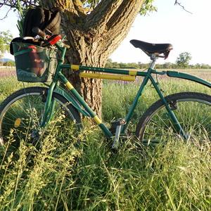 Велосипед и дача