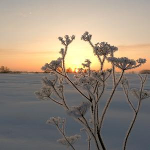 Последнее зимнее утро этого года