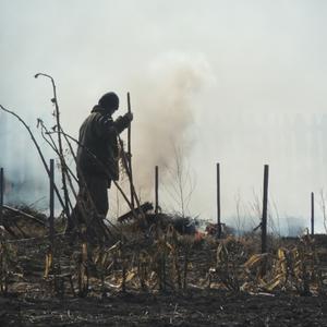 В соседнем огороде выжигают прошлогоднюю траву