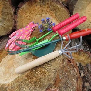 Сделала себе подарочек- купила садовые инструменты