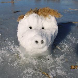 Снеговик растаял. Остался только снегохрюн
