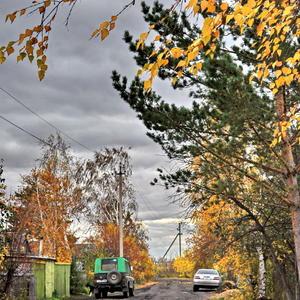 Осенний дачный этюд